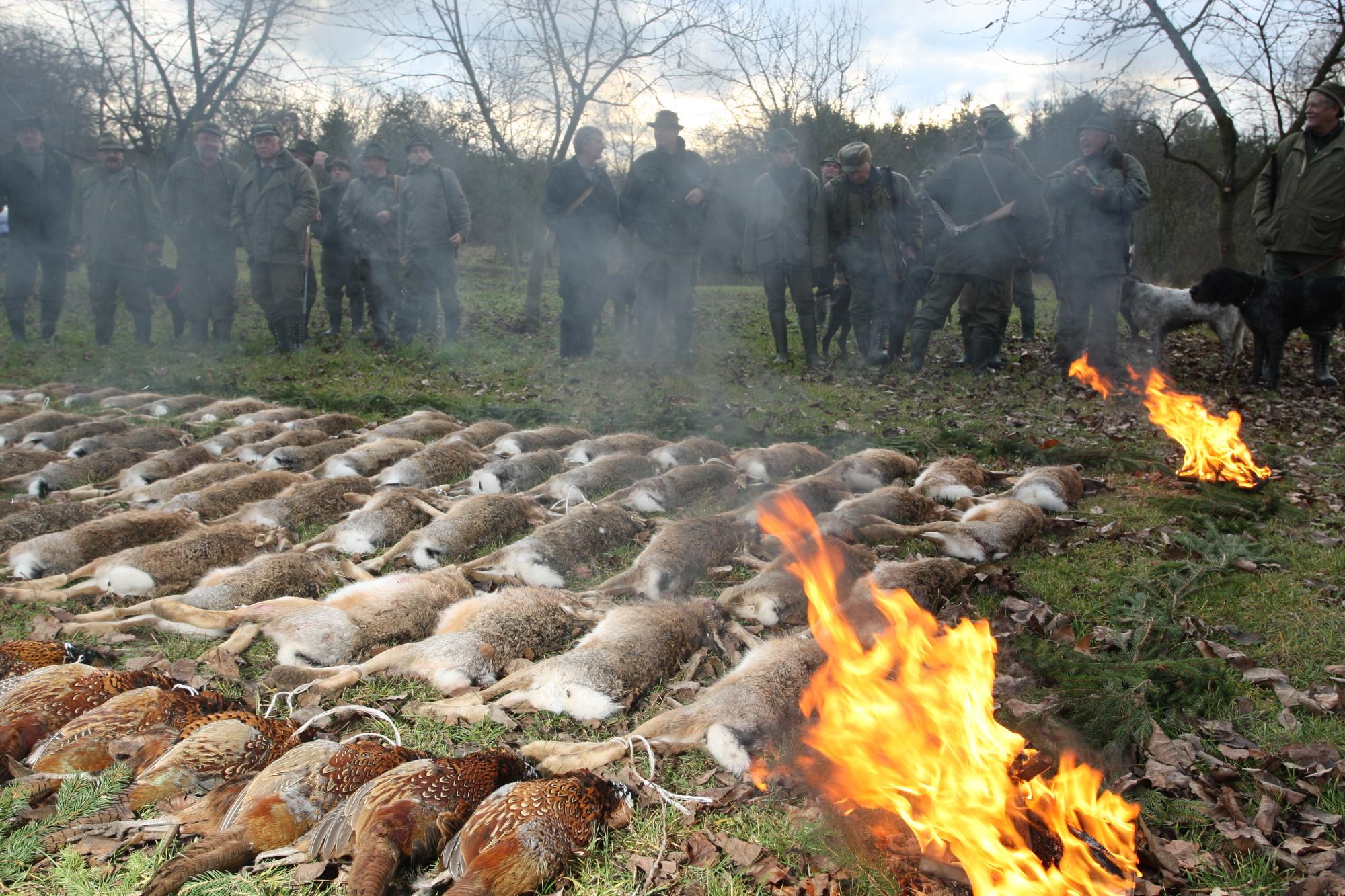 myslivci vyhrad lovu